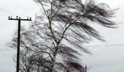 ВМолдове объявили желтый код метеоопасности из-за штормового ветра