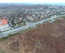 Codrul решает все. Как сотни гектаров государственной земли на окраине Кишинева чуть не утекли в частные руки