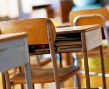 Демократы пошли в школу. Министру просвещения поручили     исправить ошибки школьной реформы Майи  Санду