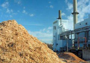 Энергия и биомасса в Молдове