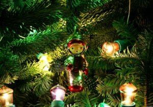 Moldsilva планирует продать в этом году 52 тыс. новогодних елок и сосен