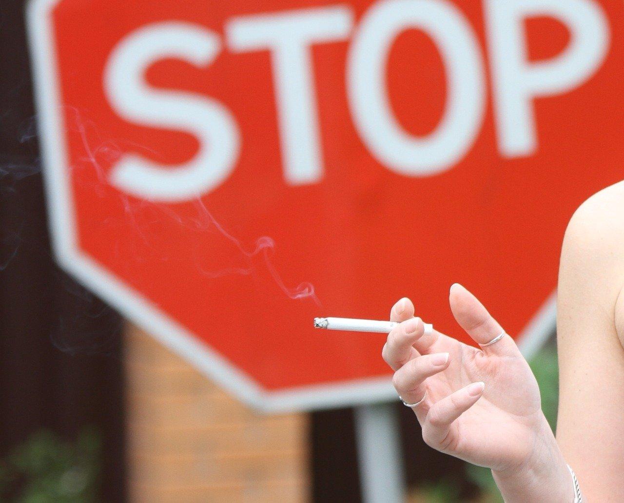 Закажи 24 сигареты купить сигареты честерфилд мелким оптом в москве дешево
