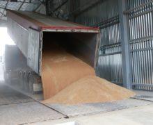 Trans Oil снова намерен экспортировать пшеницу изгосрезерва. Слусарь потребовал запретить вывоз