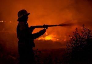 ВКишиневе в«Долине роз» загорелся мост. Пожарные рассказали подробности