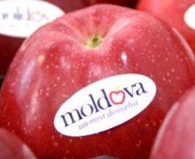 Maia Sandu a solicitat Rusiei să prelungească acordul privind exporturile fără taxe a produselor moldovenești