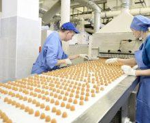 Агентство занятости составило список самых высокооплачиваемых вакантных рабочих мест в Молдове