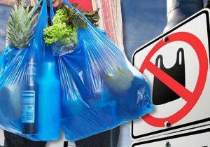 ВМолдове введут штрафы заиспользование ипродажу пластиковых пакетов ипосуды