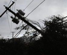 Правительство выделило более 2,6 млн леев на устранение последствий сильного ветра 11 марта