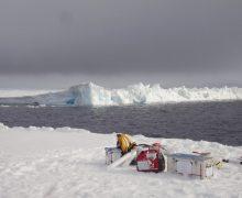 Исследователи обнаружили частицы пластика и резины в снегах Арктики