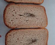 В один из детсадов Кишинева поставляли червивую рыбу и хлеб с мазутом. Что говорят в мэрии?