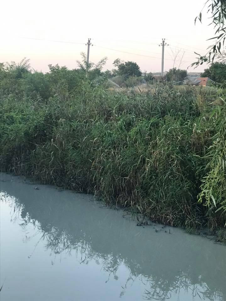 ВКишиневе река Бык окрасилась вбелый цвет. Экс-глава Apă-Canal Chișinău онеприятном запахе вгороде