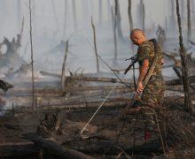 ВРоссии начали тушить лесные пожары