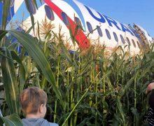 Вылетевший из Москвы пассажирский самолет совершил аварийную посадку в кукурузном поле. Пострадали 23 человека