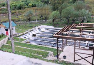 Выплывай сам. Как рухнувшая плотина едва не уничтожила первую в Молдове форелевую ферму. Подкаст NM