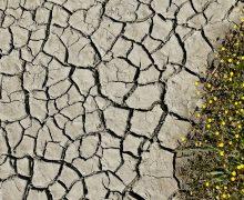 ВМолдове синоптики обещают жару изасуху до4августа