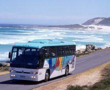 Автобусы из Кишинева в Затоку начнут ходить с 7 июня
