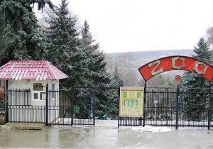 В Кишиневе открывается зоопарк. 1 июня вход для детей — бесплатный
