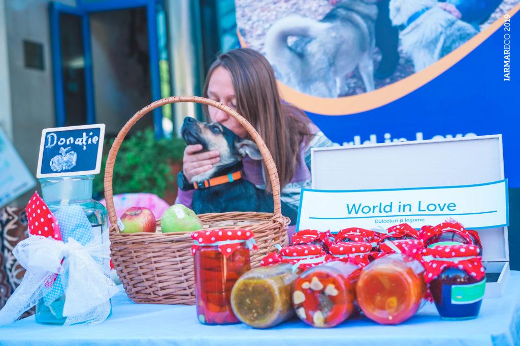 IarmarEco 2019: два дня местных продуктов, семинаров и зеленых инициатив