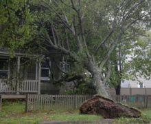Ураган Дориан добрался доКанады. Полмиллиона домов остались безэлектричества