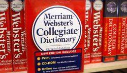 Словарь Merriam-Webster разрешил использовать слово they для обозначения людей, которые…