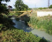 Итоги дня: о том, что за соглашение подписали ПСРМ и ACUM, как и почему задержали Марину Таубер, и кто уничтожил реку Бык