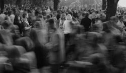 «ВМолдове63% женщин подвергались насилию». Офис народного адвоката отчитался перед комитетом…