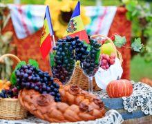 10 виноделен, куда можно поехать на День вина. Обзор NM