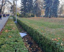 Жаркий ноябрь в Молдове. Как погодные аномалии влияют на людей