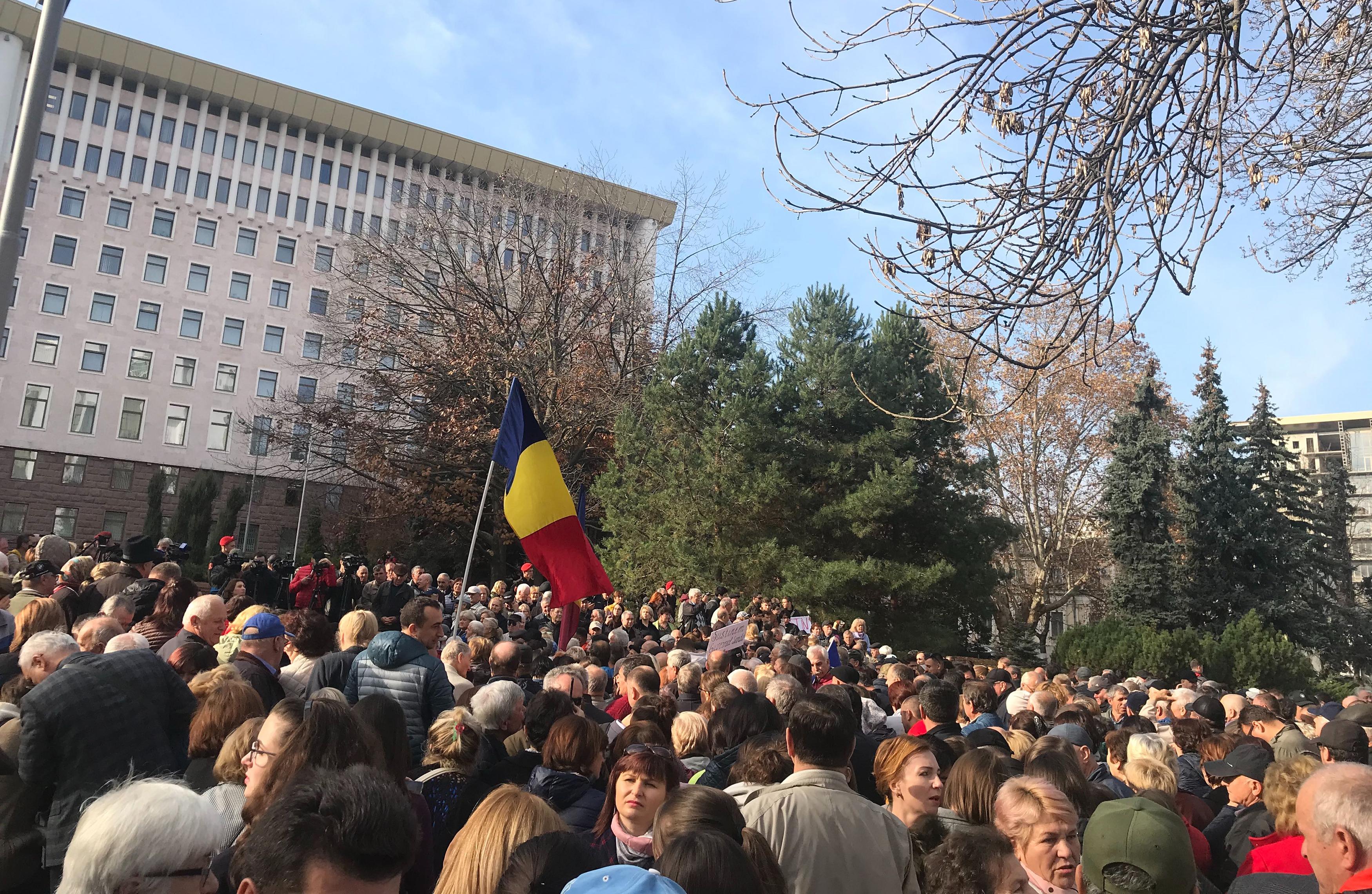 протест, парламент