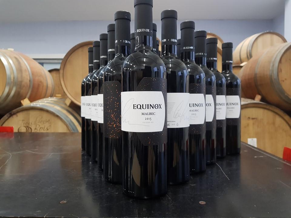 Как в Молдове производят эко-вина. История компании Equinox