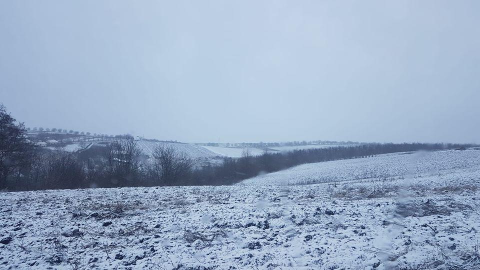 ВМолдове выпал снег. Какую погоду обещают синоптики вближайшие дни