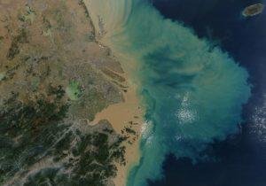 В2019 году Мировой океан нагрелся дорекордной температуры