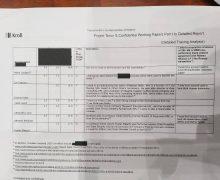 Депутат Реницэ опубликовал предполагаемые копии Kroll-2. Они содержат фрагменты списка бенефициаров кражи миллиарда