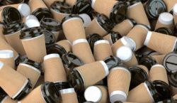 Депутаты взяли бумажные стаканчики. А экологи — против