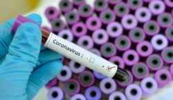 ВМолдову доставили тесты для диагностики коронавируса. Где можно будет сдать…