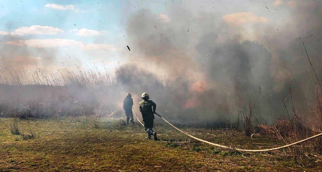 В Кагульском районе произошел пожар. Огонь уничтожил 70 га растительности (ФОТО)