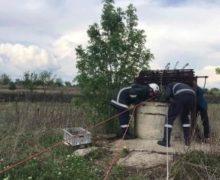 ВСтавченах вколодце вблизи кладбища нашли тело женщины