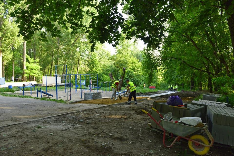 В кишиневском парке Butoiaș появится новая аллея для пешеходов (ФОТО)
