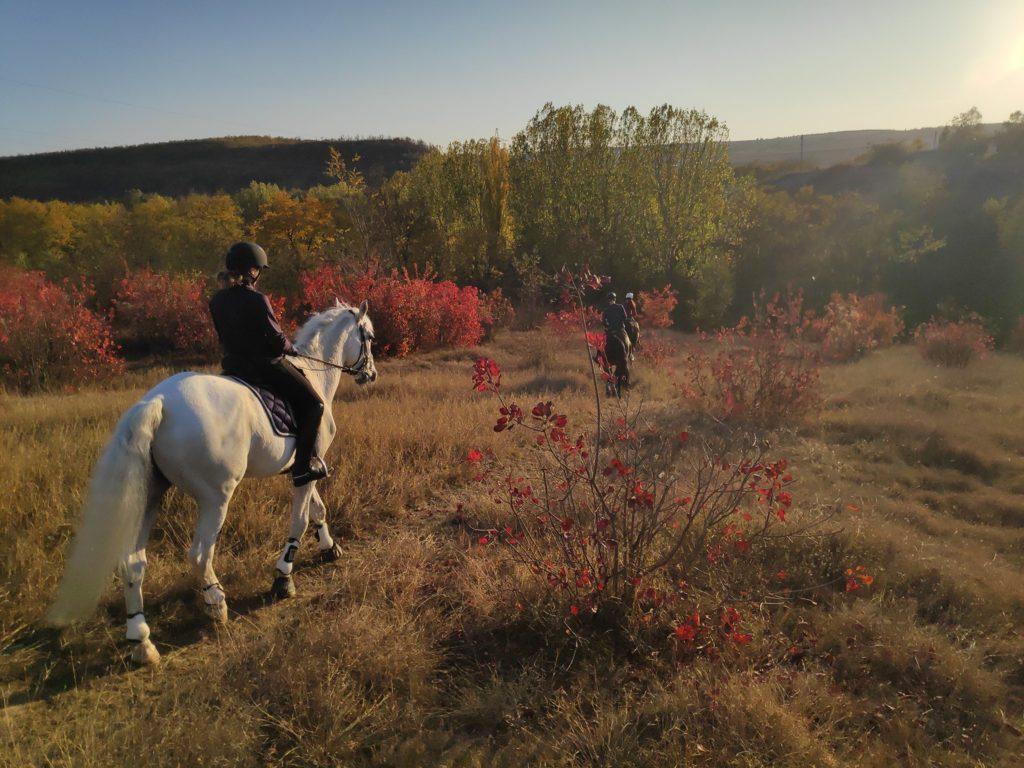 Сплав по Днестру, пикник в лесу и верховая езда. Как можно отдохнуть в Молдове в ближайшие выходные