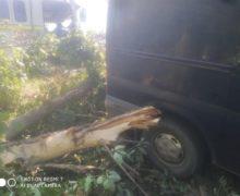 ВСорокском районе произошла авария. Водитель погиб наместе