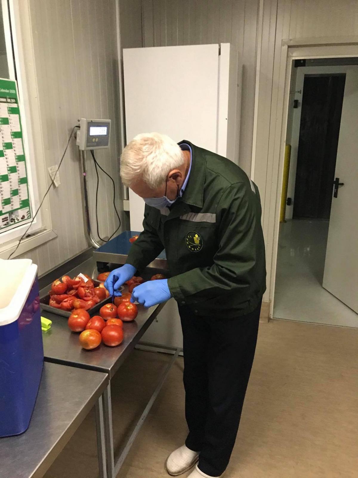 FOTO Un lot de peste 18 tone de tomate, returnat de ANSA în țara de origine