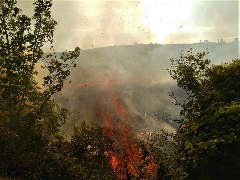 FOTO Un incendiu de vegetație a izbucnit în municipiul Ungheni. Aproximativ 70 ha de teren a fost afectat de foc