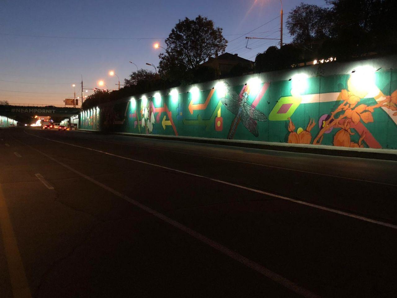 Pictura murală de sub podul de la Telecentru a fost finalizată. Costul estimativ al proiectului este de 300 de mii de lei