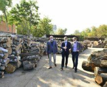 ВКишиневе некоторые категории жителей смогут бесплатно получить дрова