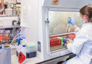 «Отпандемии нет панацеи». ВООН обсудили вакцину имеры борьбы скоронавирусом