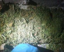 Вдоме жителя Кагульского района нашли 12кг наркотиков стоимостью 1,2 млн леев (ФОТО)