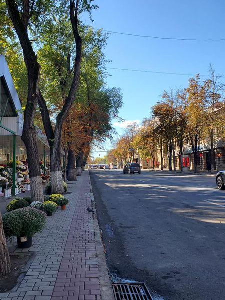 ВКишиневе возле цветочного рынка на Бэнулеску-Бодони нет припаркованных машин. Что произошло (ФОТО)
