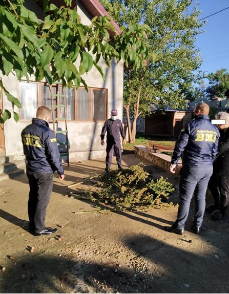 Бюро миграции иубежища провело обыски вдомах Глодянского района. Там обнаружили наркотики