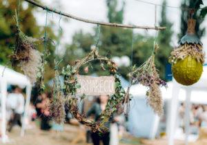 В Яловенах пройдет ярмарка экологических возможностей IarmarEco