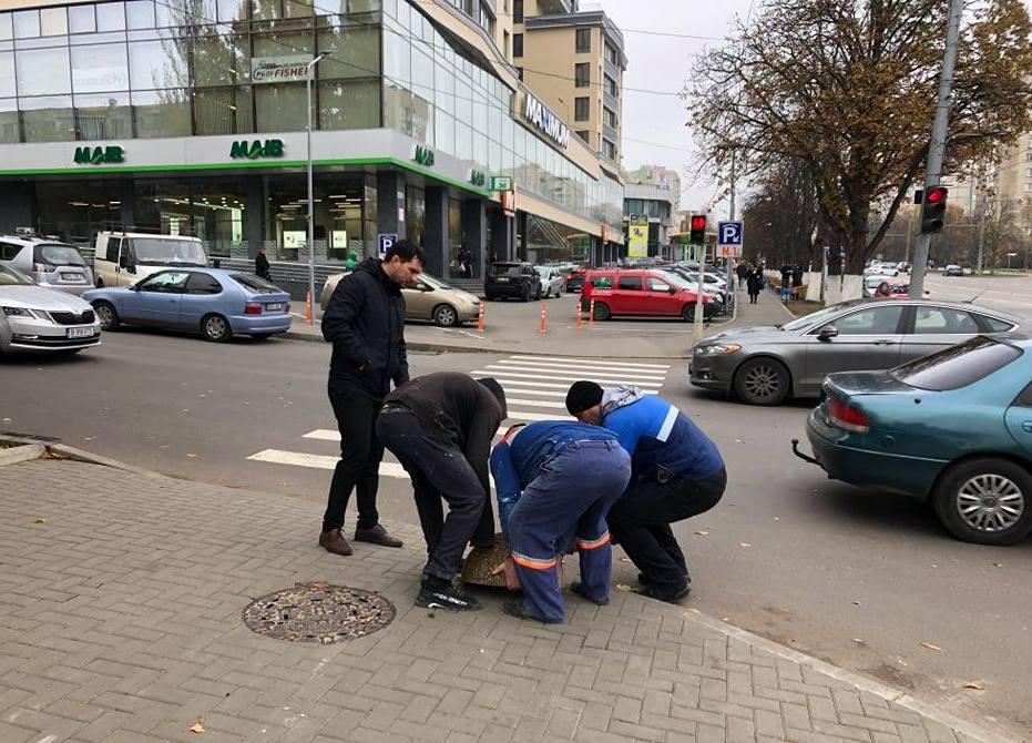 """""""Gata cu parcarea pe trotuar"""". Pretura Râșcani a instalat plăci din beton pe o porțiune a bd. Moscova (FOTO)"""